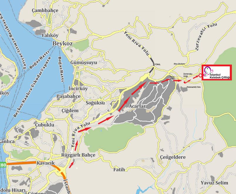 harita-istanbulkelebek2