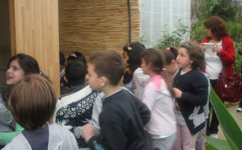 Okul Gezileri